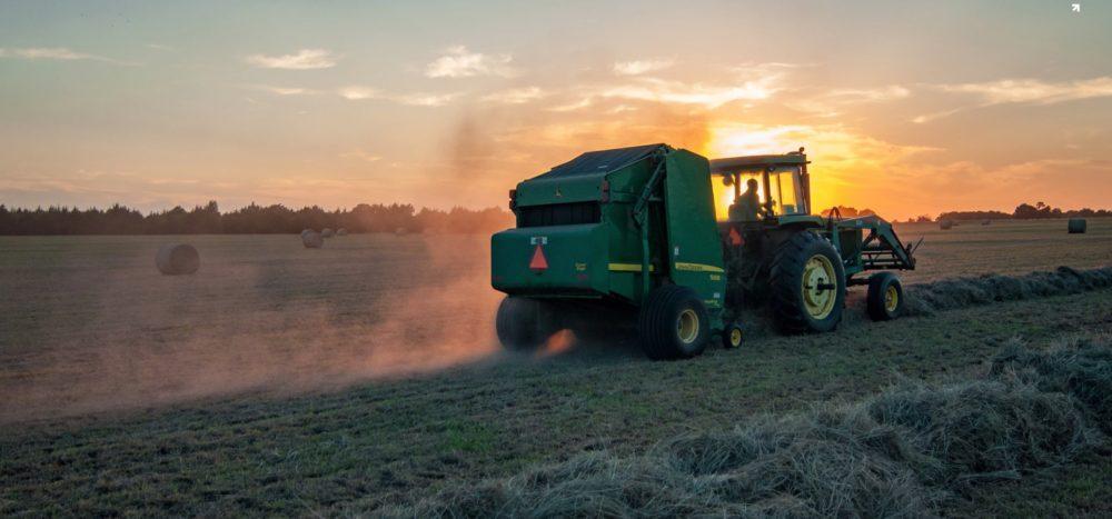 Farmer Blog